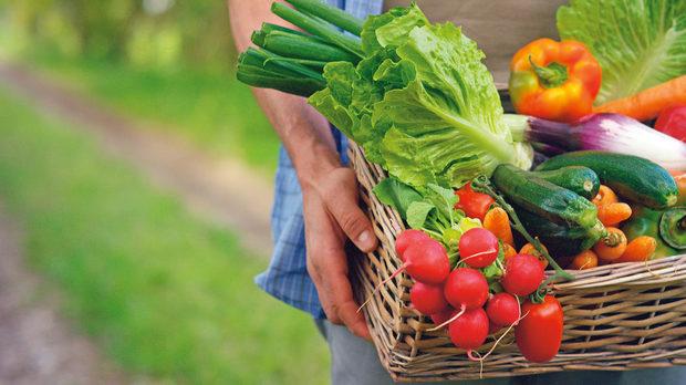 Нова наредба за специфичните изисквания за извършване на хранително банкиране в България