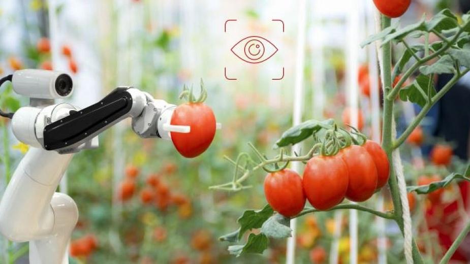 Международно изложение и конференция в областта на хранителните технологии Food Technology Asia 2020, Пакистан