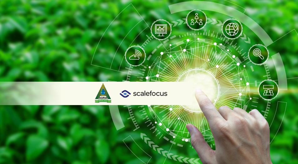 Scalefocus извърши първото регионално внедряване на ERP решението SAP S/4HANA STE за Agria