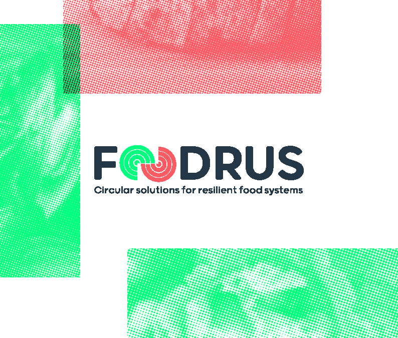 Нов проект на Камарата: FOODRUS –  circular solutions for innovative food system